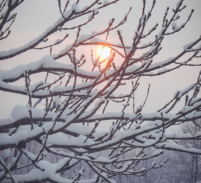 Ferie zimowe w Folwarku Wrzosówka-10