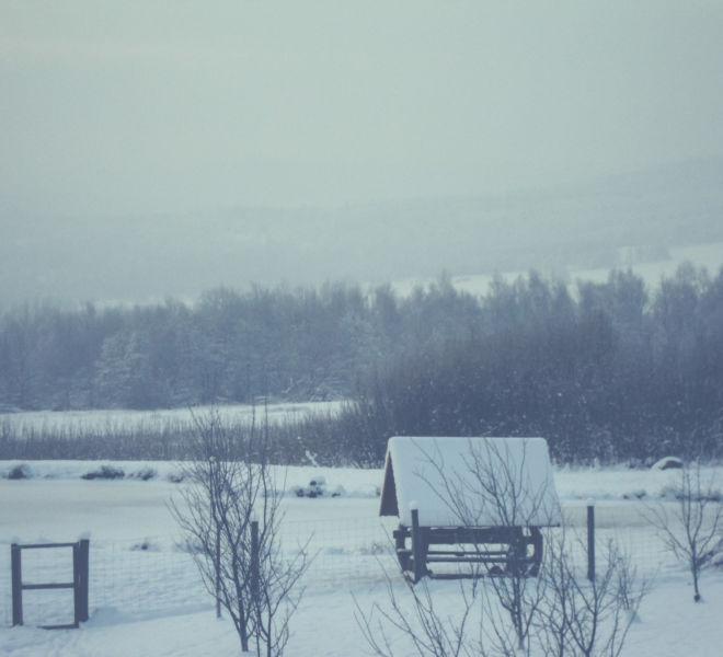 Ferie zimowe w Folwarku Wrzosówka-15