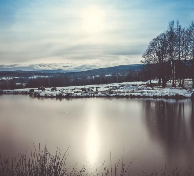 Ferie zimowe w Folwarku Wrzosówka-25