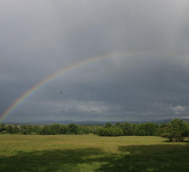 zdjęcia ze wsi od cioci Gosi 039